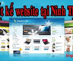Thiết kế website tại Ninh Thuận giá rẻ CNBT