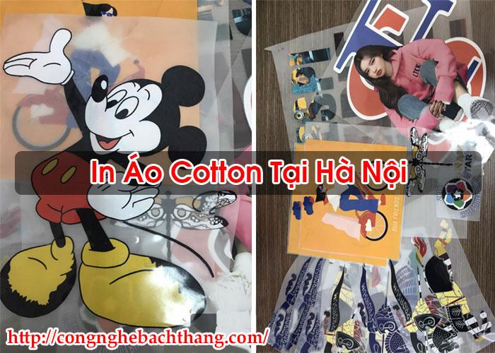 In Áo Cotton Tại Hà Nội